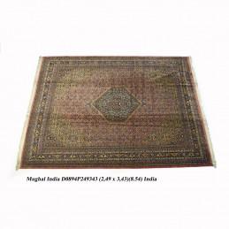 MUGAL INDIA 249X343...